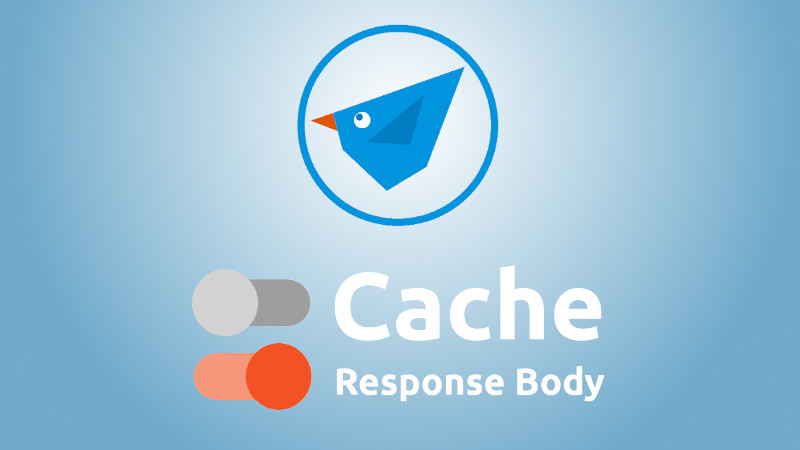 New Feature - Cache Response Body